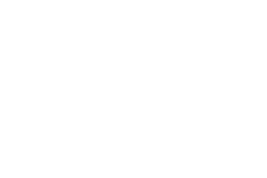 Professional-Builders-Supply_Triangle-Builders-Guild_VendorOfTheYear_logo